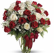 25 red and wite roses